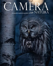 Camera Natura 4 nro lehti tarjous