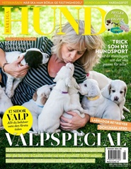 Härliga Hund 6 nro lehti tarjous