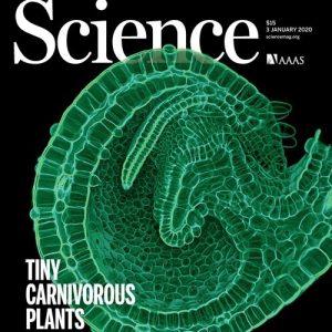 Science tarjous