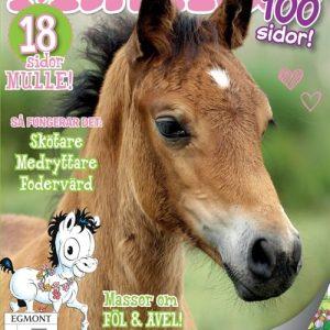 Min häst tarjous